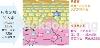 日本专利米萃取赛洛美-PhytoceramadieTM