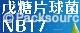 戊糖片球菌 NB-17 (Pediococcus pentosaseus)