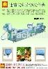 连续式叶菜类洗菜机(中型生产线)BMB-119
